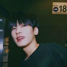 Mingyu Wonwoo, Seungkwan, Woozi, Won Woo, Seventeen Wonwoo, Seventeen Wallpapers, Drama, Pledis Entertainment, Fandom
