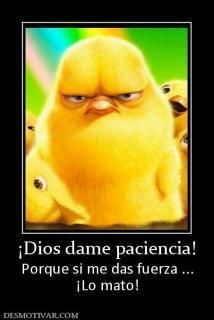 Gott gib mir Geduld - Funny quotes - Welcome My Crafts Spanish Posters, Spanish Humor, Spanish Quotes, Funny Cute, Hilarious, Mexican Problems, Humor Mexicano, Frases Humor, Funny Pictures
