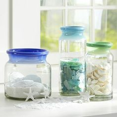 Organize shell collections or other collections. Memory Jars + Vase Fillers #pbteen