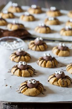 Have you always been a fan of festive Halloween cookies? Then you must make a batch of Cute Chocolate Peanut Butter Spider Cookies! This Halloween dessert recipe is both spooky and adorable. Halloween Desserts, Comida De Halloween Ideas, Halloween Snacks For Kids, Halloween Cookie Recipes, Halloween Cookies Decorated, Spooky Halloween, Halloween Chocolate, Halloween Dinner, Halloween Parties