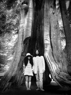 "pasttensevancouver: ""John Lennon & Yoko Ono, Stanley Park, 1969 Source: John and Yoko Archive "" John Lennon Yoko Ono, Stanley Park, Past Tense, O Canada, Portraits, Most Beautiful Cities, Vancouver Island, Pacific Northwest, British Columbia"