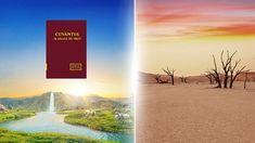Cum să discernem realitatea adevărului și cunoașterea teologică #Dumnezeu #bible_versuri #rugăciune #Evanghelie #credinţă #Iisus_Hristos #salvare #biserică #Împărăţia #marturie #creştinism Video Clip, Bible