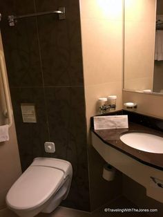 sink and toilet, wheelchair accessible, cabin 2555, ms Rotterdam cruise ship, Holland America
