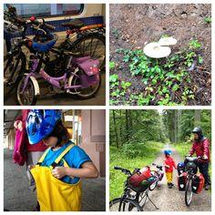 Kinzigtalradweg: Von Freudenstadt nach Alpirsbach