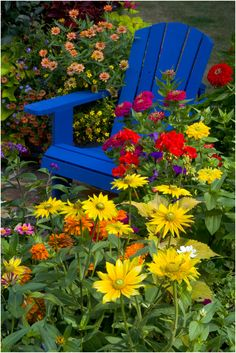 Blue chair on stone patio surrounded by summer annual flowers in full bloom