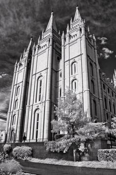 """Steadfast"" #Temple #LDS Salt Lake Temple #Phtoog #Infrared"