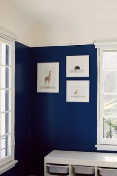Behr Admiral Blue - Stain Blocking Paint and Primer In One
