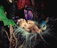baby fairy <3  Now that is sweet!