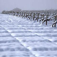 Viña nevada. Fotografía de Ricardo Vila... Espectacular!!!!