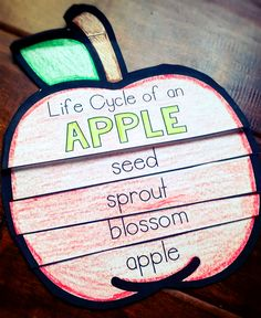 The kids will love this flip book to learn about the life cycle of an apple.