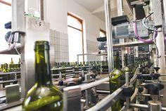 La sala d'imbottigliamento si trova in un moderna struttura che ospita un innovativo impianto di imbottigliamento di 8.000 bottiglie all'ora e 20.000.000 all'anno. Una linea fornita di ogni tipo di controllo,dai                      più semplici come la presenza di tappo,capsule,l'etichetta,il livello del vino in bottiglia, fino alla bilancia pesa cartoni, a quelli più tecnici e articolati come i controlli dei lavaggi automatici e i loro risciacqui.