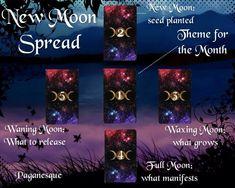 New Moon Spread