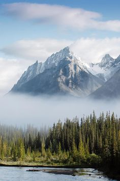 "bvddhist:  ""banshy:  "" Banff National Park // Stevin Tuchiwsky  "" """