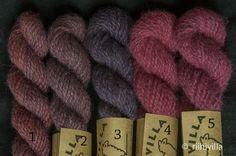 Blogi kasvivärjäyksestä, sienivärjäyksestä ja värikasveista. My blog is about natural dyeing with plants and mushrooms