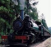 Take a ride on the 1880 Train that runs from Keystone to Hill City and back!