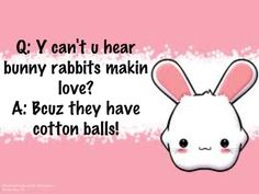 Bunny Jokes are funny.