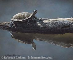 ... Rebecca Latham's paintings can be found on her art blog. - http://www