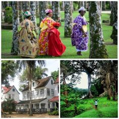 Mijn travel wish list: Suriname