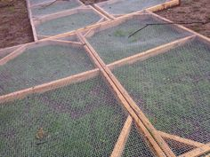 Frames for reseeding pasture grasses for chickens. Such and Such Farm http://www.suchandsuchfarm.com/wp-content/uploads/2014/04/IMG_2431.jpg