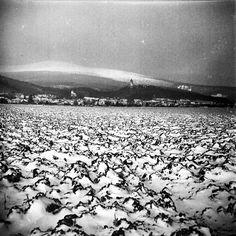 A Photo by emkei - Lomography Lomography, Winter Time
