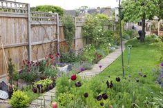 Decking path in a narrow garden