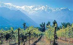 Chilean Wine Country, Chile