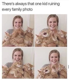 34 Funny Cat Pictures Because Caturday Is Almost Here - 34 Lustige Katzenbilder, weil Caturday fast da ist Funny Animal Memes, Cute Funny Animals, Cute Baby Animals, Funny Cute, Cute Cats, Cat Memes Hilarious, Funny Pics, Cat Fun, Hilarious Photos