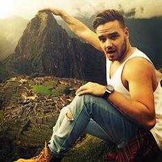 Liam Payne Finds Himself In An Antsy Situation - http://oceanup.com/2016/08/12/liam-payne-finds-himself-in-an-antsy-situation/