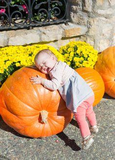CUTIE! baby on a pumpkin