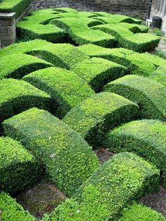 UK - Old Washington - Decorative Box Hedge in Garden Topiary Garden, Garden Art, Garden Design, Box Garden, Formal Gardens, Outdoor Gardens, Landscape Architecture, Landscape Design, Parks