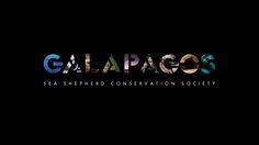 Proiezione n. 2. Documentario GALAPAGOS. Serata SEA SHEPHERD. venerdì 06 giugno 2014 (www.associazionenaica.blogspot.it)