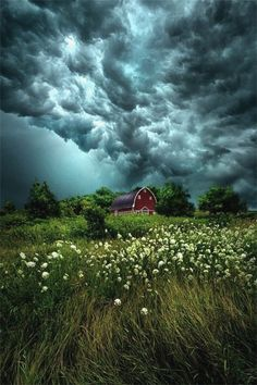 """""""Riding the Storm"""" by Phil Koch"""