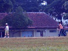 Nice Howzat Cricket Singapore photos - http://singapore-mega.com/nice-howzat-cricket-singapore-photos/
