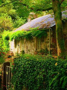 Ancient  Welsh Cottage, Fachwen, North Wales