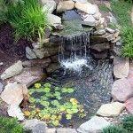 Bahçe İçin Süs Havuzları     Dekorasyon Cini