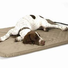 This is one of K & H Pet Products electrically heated pads designed to keep your pet warm.  These pads come in many sizes and colors starting at $54.16 on fldfurryfriends.com.
