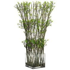 26'Hx12'W Twig and Mini Leaf Artificial Topiary Plant w/Glass Container -Green/Brown *** Check out this great product.