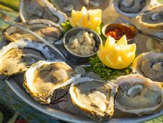 For the Seafoodies: Your Guide to Hilton Head Island Seafood | Hilton Head Island Seafood House, Local Seafood, Hilton Head Island Restaurants, Backyard Restaurant, Grouper Fillet, She Crab Soup, Oysters, Love Food, Stuffed Peppers