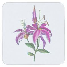 Lilies Square Paper Coaster - purple floral style gifts flower flowers diy customize unique