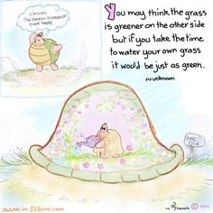 Yogi Turtle-