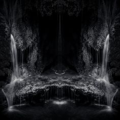 Twins Spring by Alexandru Crisan on Art Limited