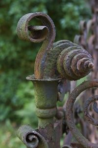 Exquisite gate detail. Fantastic green patina and rust. The flaking adds even more interest.