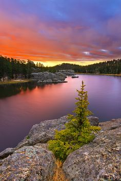 sylvan lake at sunset looks like a gorgeous hike. This lake is in Custer State Park in the Black Hills of South Dakota, U.S.A.