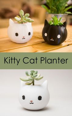 Super cute cat planter can be used not only as a planter but also as a pen holder, small organizer... Kitty Planter, Animal Planter Christmas Gift. #affiliate