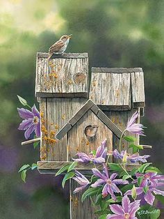 Pretty birdhouse