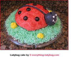 The grass is shredded coconut colored green!  From;Everything Ladybug! The source for Ladybug Stuff!