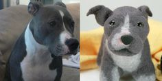 custom stuffed dog - a stuffed animal made to look exactly like your dog!