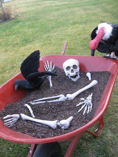 Bones in a Wheelbarrow .
