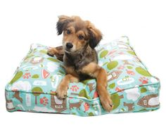 Just in time for spring, Molly Mutt has updated their collection with four fantastic new doggie duvet designs. Following in the tradition of naming their patterns after songs, the new kids on the block are Bleecker Street, Nightswimming, Wild Horses, and Secret Meeting.