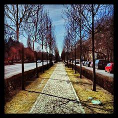 "@kelex_2x's photo: ""#Budapest #street #utca #út"""